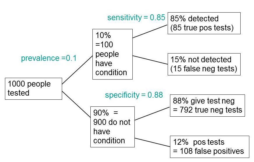 what+is+a+diagnostic+essay